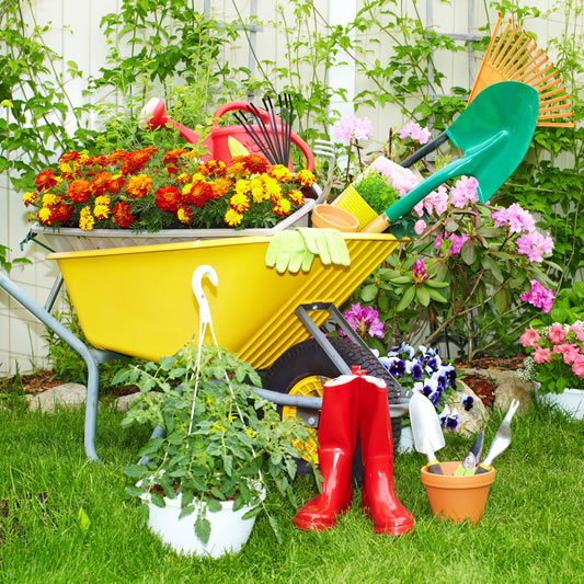 AJL Services is ready to get rid of your garden waste
